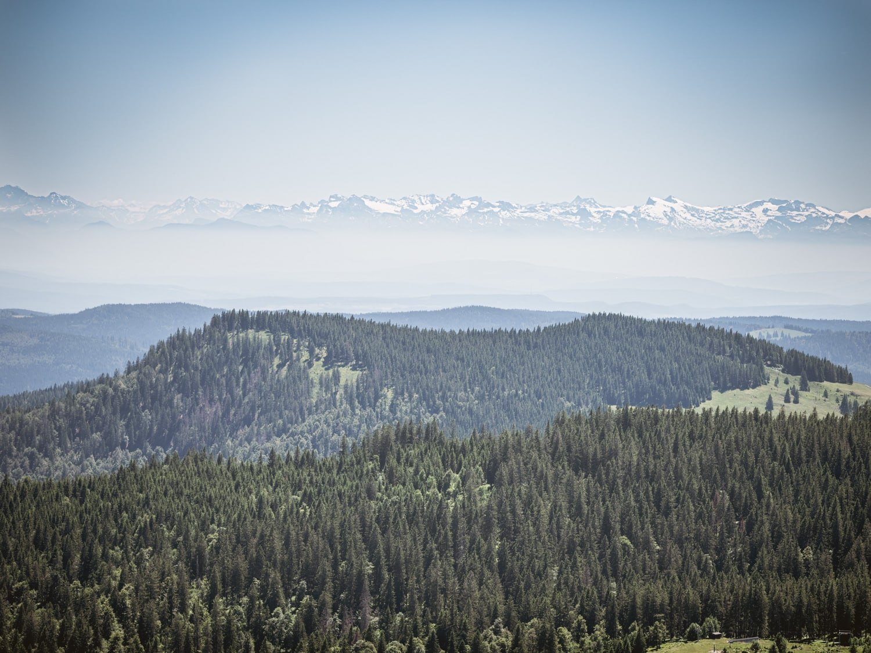 Hochzeitfotograf Alpen Alpenblick Feldberg Schwarzwald